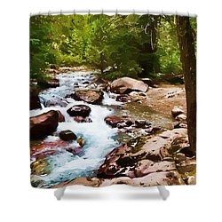 Mountain Stream Shower Curtain by Dan Dooley