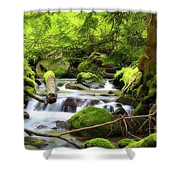 Mountain Stream In The Pacific Northwest Shower Curtain