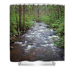 Shower Curtain featuring the photograph Mountain Stream Laurel by John Stephens