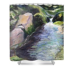mountain Stream Shower Curtain by Sherril Porter