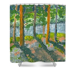 Mountain Valley Shower Curtain by Rodger Ellingson