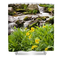 Mountain Waterfall And Wildflowers Shower Curtain by Utah Images