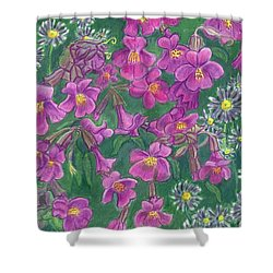 Shower Curtain featuring the drawing Mountain Wild Flowers by Dawn Senior-Trask