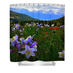 Mountain Wildflowers Shower Curtain by Karen Shackles
