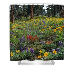 Mountain Wildflowers Shower Curtain by Leland D Howard