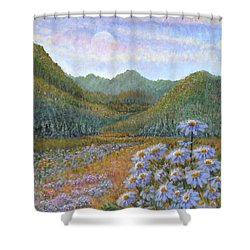 Mountains And Asters Shower Curtain by Holly Carmichael