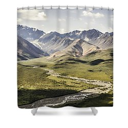 Mountains In Denali National Park Shower Curtain