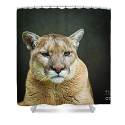 Mountian Lion Shower Curtain