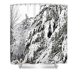 Mourn The Winter Shower Curtain