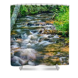 Mouth Of The Hurricane River Shower Curtain