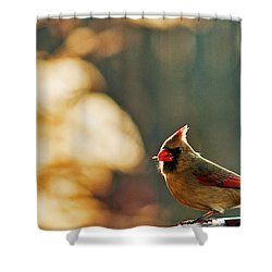 Mouthful Shower Curtain