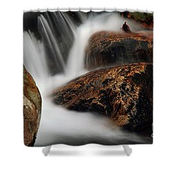 Shower Curtain featuring the photograph Moving Along by Darren Fisher
