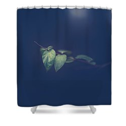 Shower Curtain featuring the photograph Moving In The Shadows by Shane Holsclaw