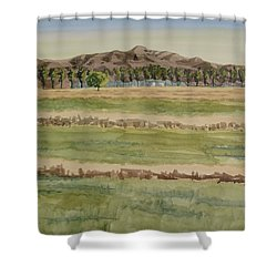 Mown Hay Shower Curtain by Bethany Lee