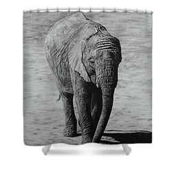 Mpumi Shower Curtain