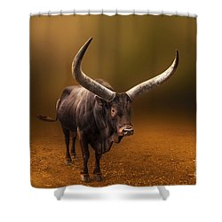 Mr. Bull From Africa Shower Curtain by Charuhas Images
