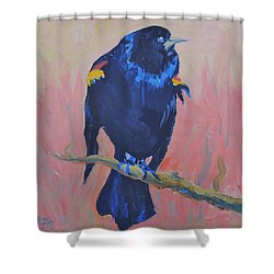 Shower Curtain featuring the painting Mr. Cool  by Francine Frank