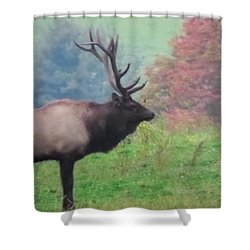 Shower Curtain featuring the photograph Mr Elk Enjoying The Autumn by Jeanette Oberholtzer