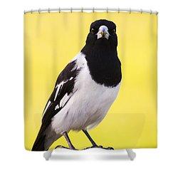 Mr. Magpie Shower Curtain