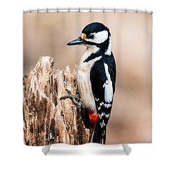 Mrs Woodpecker Shower Curtain