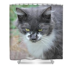 Ms. Mustache 2 Shower Curtain