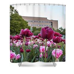 Msu Spring 21 Shower Curtain