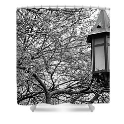 Msu Spring 8 Shower Curtain by John McGraw