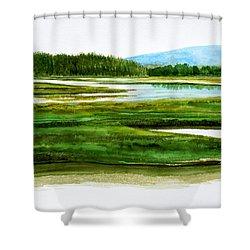 Mt Desert Island Shower Curtain