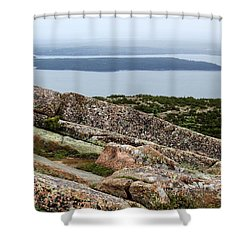 Mt. Destert Island View Shower Curtain