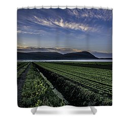 Dawn And Fog Over The Farmland Shower Curtain by Angelo Marcialis