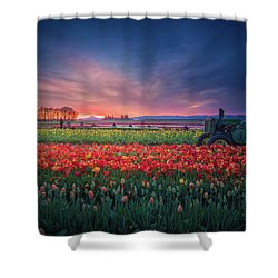 Shower Curtain featuring the photograph Mt. Hood And Tulip Field At Dawn by William Lee