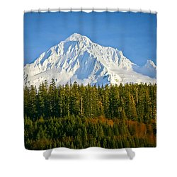 Mt Hood In Winter Shower Curtain