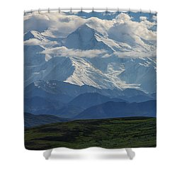 Shower Curtain featuring the photograph Denali by Gary Lengyel
