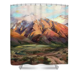 Shower Curtain featuring the painting Mt Nebo Range by Steve Henderson