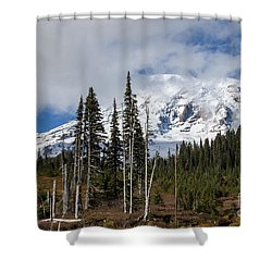 Mt. Rainier High Meadow Shower Curtain