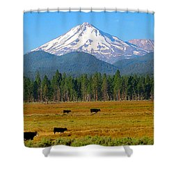 Mt. Shasta Morning Shower Curtain by Betty Buller Whitehead