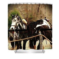 Much Needed Rest Shower Curtain by Kim Henderson
