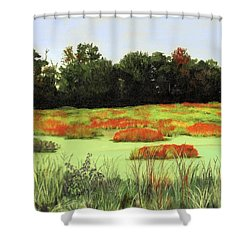 Mud Lake Marsh Shower Curtain