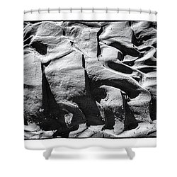 Mud Shower Curtain by R Thomas Berner