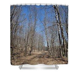 Shower Curtain featuring the photograph Mud Season In The Adirondacks by David Patterson