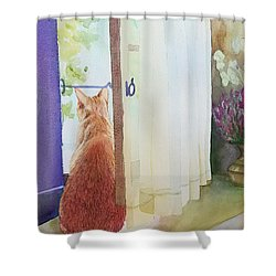 Muffin At Window Shower Curtain