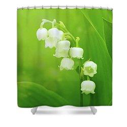 Muguet Melody Shower Curtain