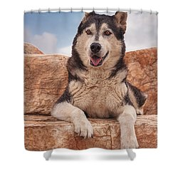 Muki  Shower Curtain by Brian Cross