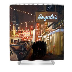 Mulberry St. Nyc Shower Curtain