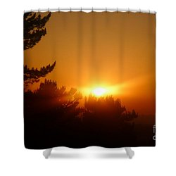 Mulholland  Shower Curtain