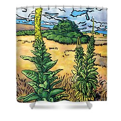 Mullein Shower Curtain by Fay Biegun - Printscapes