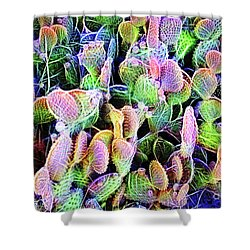 Shower Curtain featuring the digital art Multi-color Artistic Beaver Tail Cactus by Linda Phelps