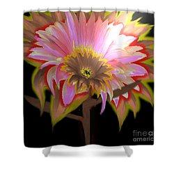 Multi Color Daisy Shower Curtain