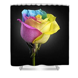 Rainbow Rose 1 Shower Curtain