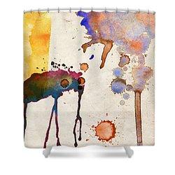 Multicolor Splash Shower Curtain